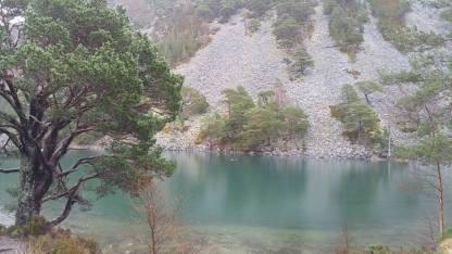 Ryvoan Pass (Green Loch)